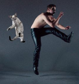 Dancing-with-cats-1-650x690