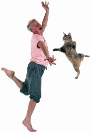 Dancing with Cats 3.1
