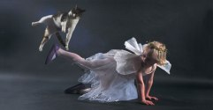 Dancing-with-cats-7-650x338