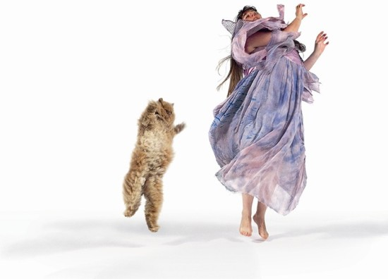 Dancing with Cats 9
