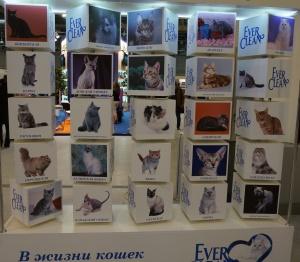 Панно с надписью: «Эти кошки выбрали нас».