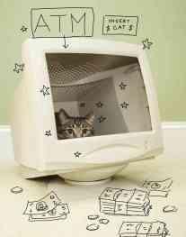 cat_internetceleb_pg2_custom-efbcbe0dafd94c7ff9dda4cfcafa3b8ecd18d206-s6-c30