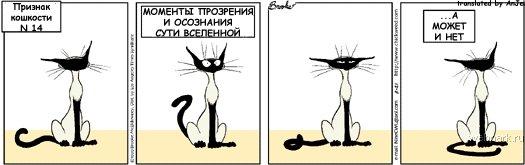 priznak_koshkosti_14