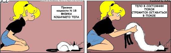 priznak_koshkosti_18