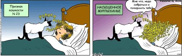 priznak_koshkosti_23
