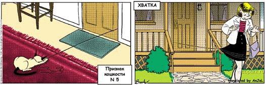 priznak_koshkosti_5