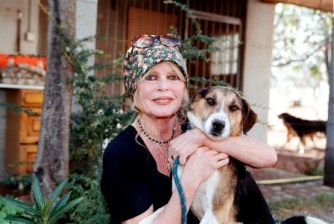 brigitte-bardot-foundations-dogs