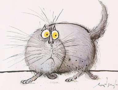 CATS-PICTURES_ORG_-_6721-1280x1024-ronald+searle-solo-miotic+pupil-whiskers-grey+hair-yellow+eyes