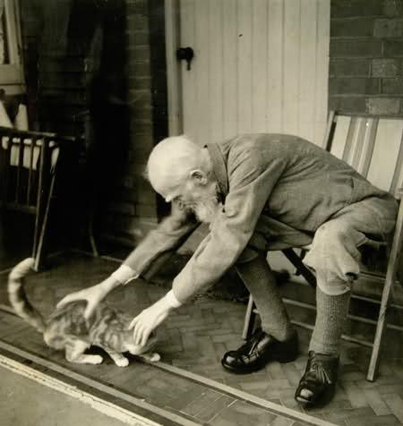 Нельзя сказать, что Бернард Шоу был великим кошатником, но он сказал: «Человек культурен настолько, насколько он способен понять кошку».