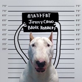 jimmy-choo-bull-terrier-illustrations-rafael-mantesso-4