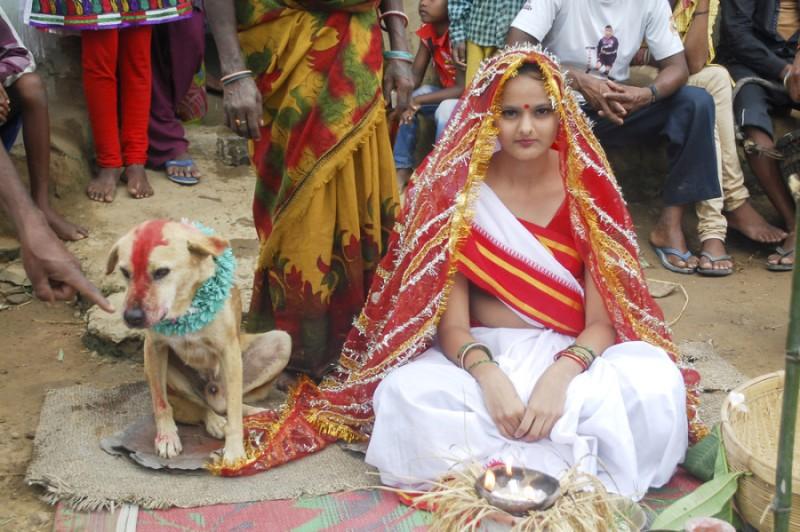 Девушка и собака_1