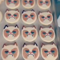 grumpy-cat-valentines-day-litter-box-i4