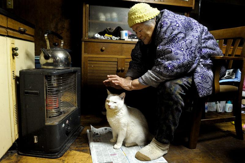 32-бабушка и кот - фотоистория  Миёко Ихара