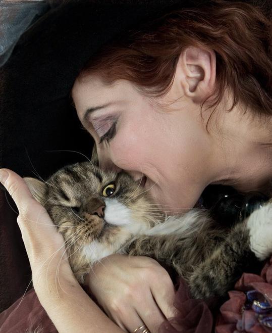 гладить-кошку