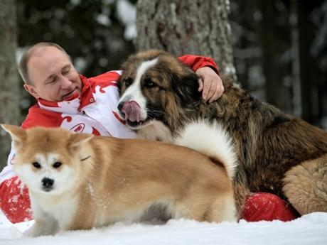 Путин, Баффи и Юмэ