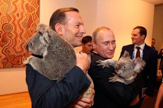 Путин и коала