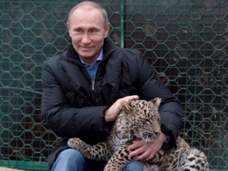 Путин и леопард