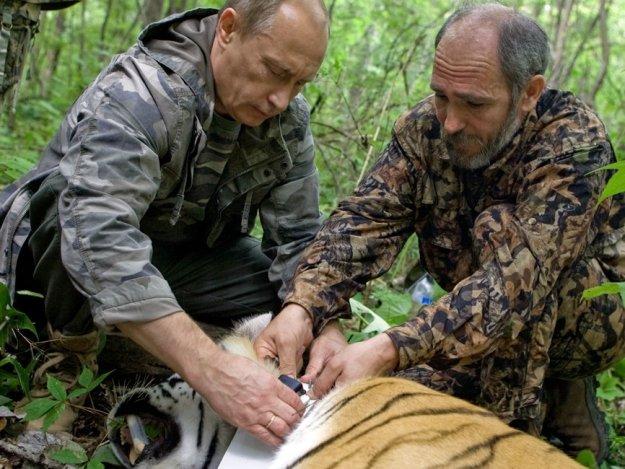 Путин и тигрица_2