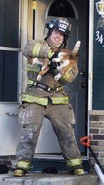 fireman-cat (1)