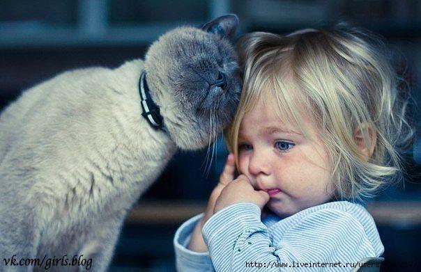 Это девушка с котом в руках