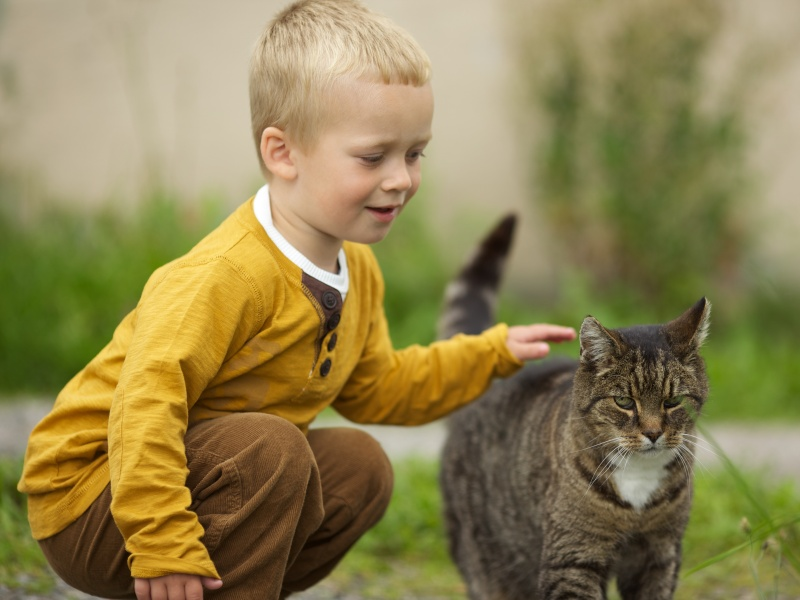 boy_with_a_cat
