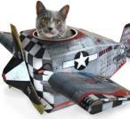 plane-cat-playhouse