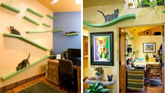 A-35-000-Renovation-Turned-This-Suburban-Home-Into-a-Cat