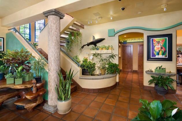california-cat-house-boasts-custom-tunnels-paths-2