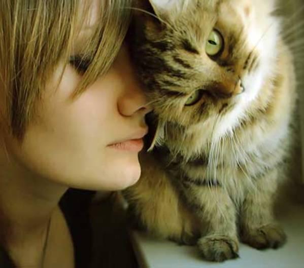cat-woman - копия