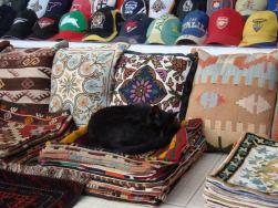 Стамбул. Кошки. Алина Васильева.
