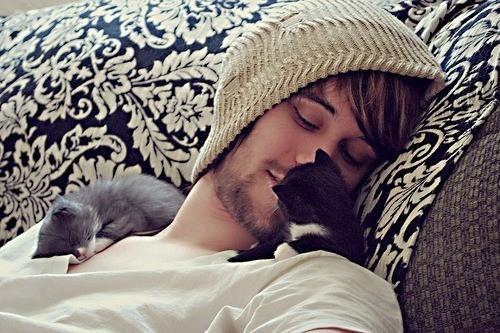 adorable-boy-cat-chico-gatito-gato-Favim.com-53801