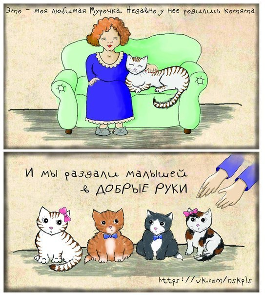 Стерилизуйте кошку_1