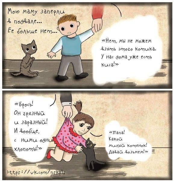 Стерилизуйте кошку_6