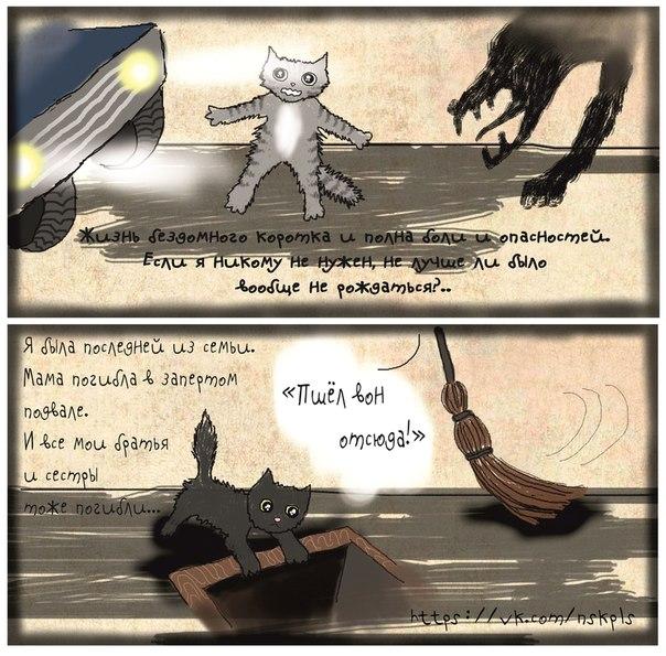 Стерилизуйте кошку_7