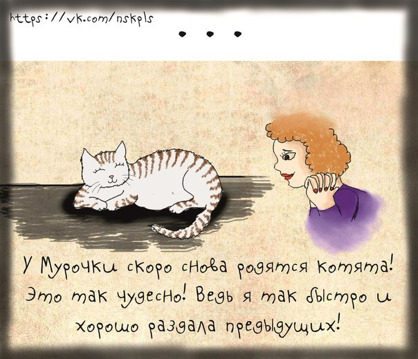 Стерилизуйте кошку_8