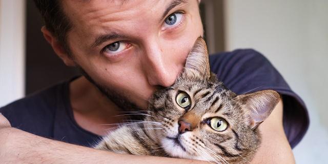 Ученые определили, что коты продлевают жизнь мужчин