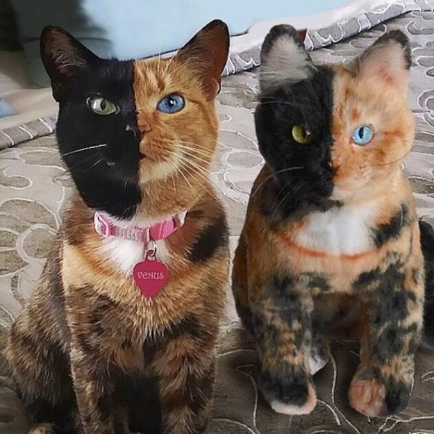 pet-copy-custom-plush-toys-cuddle-clones-21-605x605