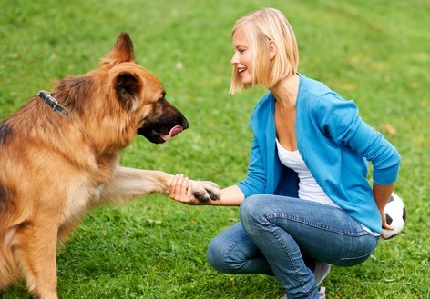 Gorgeous young blonde shaking her German Sheperd's paw