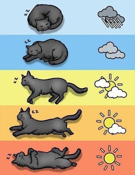 weather-service