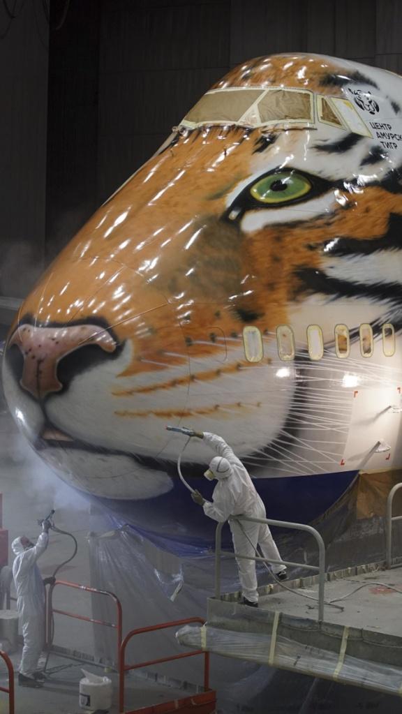 самолет тигр ullica.ru
