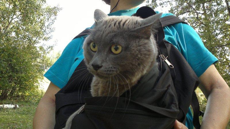 2015_В рюкзаке-1