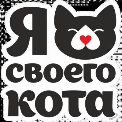 любимая кошка 5