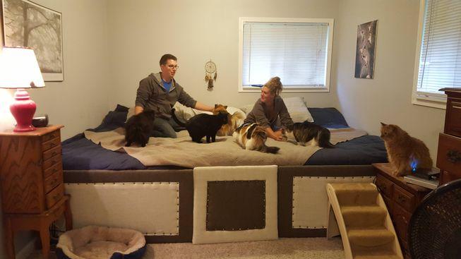 кровать для кошек 2 фото Robdogbird