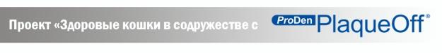 плашка_7
